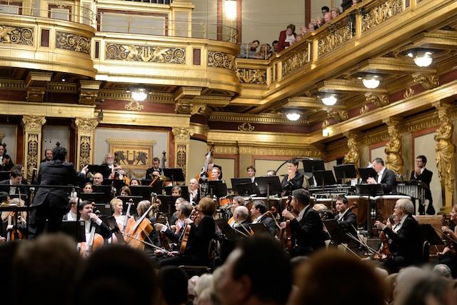 NÖ Tonkünstler-Orchester